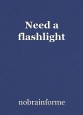 Need a flashlight