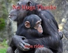 No Hugs Thanks