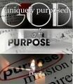 uniquely purposed