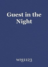 Guest in the Night