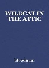 WILDCAT IN THE ATTIC