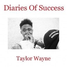 Diaries Of Success