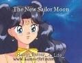 The New Sailor Moon