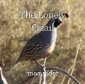 The Lonely Quail