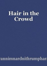 Hair in the Crowd