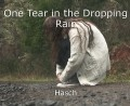 One Tear in the Dropping Rain