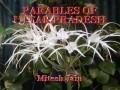 PARABLES OF UTTAR PRADESH