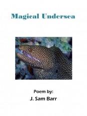 Magical Undersea