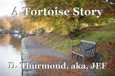 A Tortoise Story