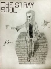 The Stray Soul