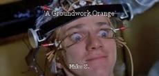 'A Groundwork Orange'