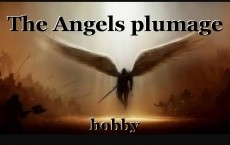 The Angels plumage