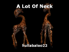 A Lot Of Neck