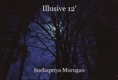 Illusive 12'