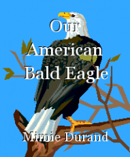 Our American Bald Eagle