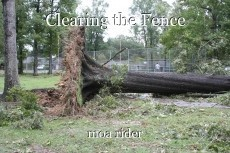Clearing the Fence