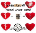 Hearts Repair and Mend Over Time