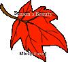 Season's Beauty