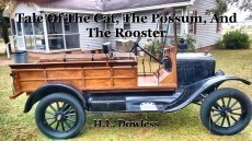 Tale Of The Cat, The Possum, And The Rooster