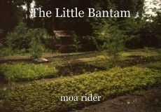 The Little Bantam