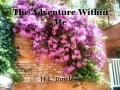 The Adventure Within Me