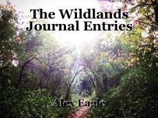 The Wildlands Journal Entries