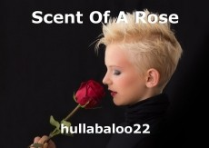 Scent Of A Rose