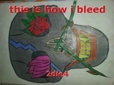this is how i bleed