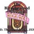 The Bird-brained Dream