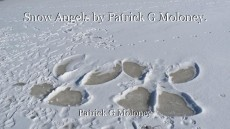 Snow Angels by Patrick G Moloney.