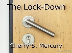 The Lock-Down