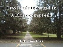 Two Roads Diverged In A Blossoming Feild