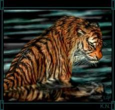 Tiger's Remorse