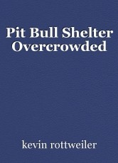 Pit Bull Shelter Overcrowded
