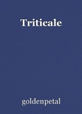 Triticale