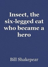 Insect, the six-legged cat who became a hero