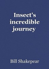 Insect's incredible journey
