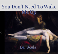 You Don't Need To Wake Me Up