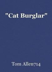 """""""Cat Burglar"""""""