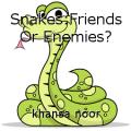 Snakes:Friends Or Enemies?