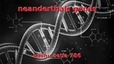 neanderthals genes