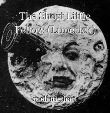 The Short Little Fellow (Limerick)