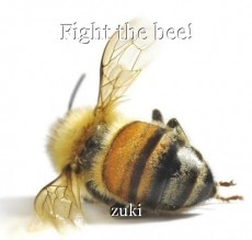 Fight the bee!