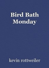 Bird Bath Monday