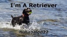 I'm A Retriever