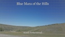 Blue Mara of the Hills