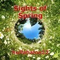 Sights of Spring