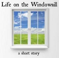 Life on the Windowsill