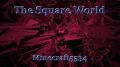 The Square World