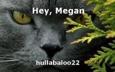 Hey, Megan